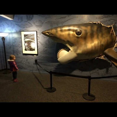 Gary Staab's magnificent full-scale Helicoprion bursting through the wall as part of Ray's traveling Buzz Saw Sharks of Long Ago exhibit at the Point Defiance Zoo and Aquarium in Tacoma, Washington.