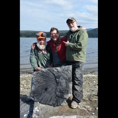 Forest service geologist Jim Baichtal, Kirk Johnson and Ray Troll with an Eocene-aged fossil palm frond in Southeast Alaska in 2014. You can see them prying up this treasure on camera in the second episode of Making North America on PBS.