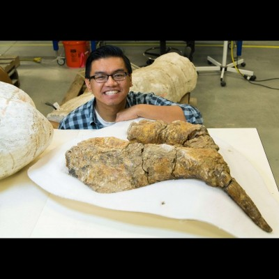 Gabriel with the lower jaw of a Desmostylus from southern California. Check out the size of that lower tusk!