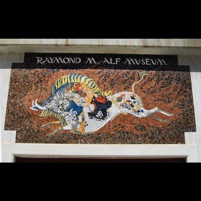 The flaming peccary logo mosaic at the entrance of the Raymond M. Alf museum.
