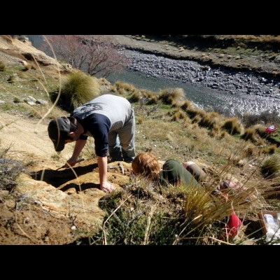 Bobby helped fellow undergrad Marcus Richards excavate a tuna-like skeleton from the top of a 40-foot cliff (yikes!) in New Zealand.The team jacketed the fossil in plaster before sliding it down the cliff in a burlap sack.  A very satisfying way to get a heavy fossil out of a very scary location!