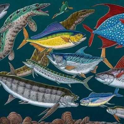 'Kansas Ocean Life', a colored pencil drawing by Ray depicting creatures that swam in the warm shallow waters of the Western Interior Seaway, some 80 million years ago.