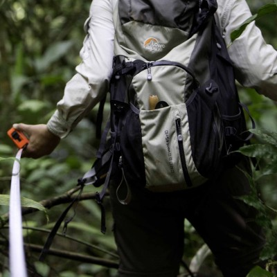 Measuring a forest transect at La Selva, Costa Rica to collect modern soils for phytolith analysis.